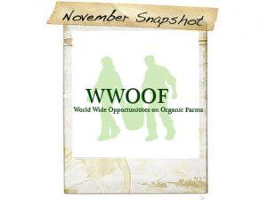 November Snapshot: WWOOF