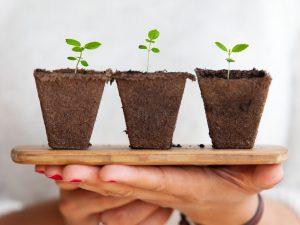 Benefits of Volunteering: Professional Growth
