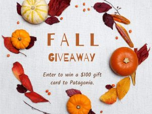You Could Win a $100 Patagonia Gift Card
