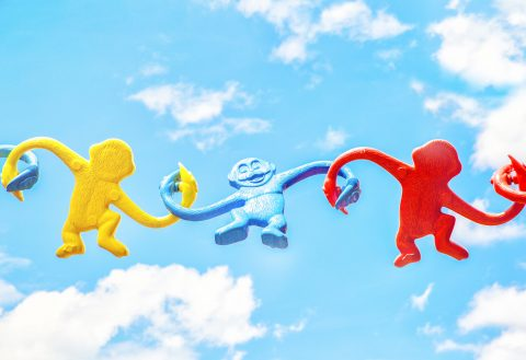 4 Best Personality Tests To Build Teamwork